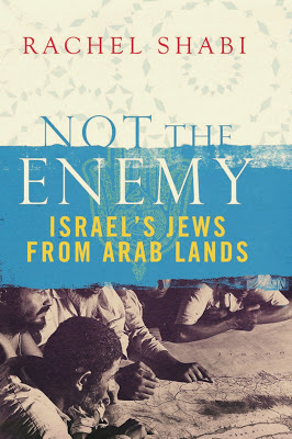 Not the Enemy by Rachel Shabi