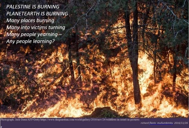 palisburning-meme